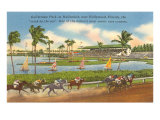 Race Track, Hollywood, Florida Posters