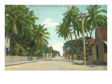 Street Scene, Key West, Florida Posters