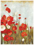 Poppies in the Wind Prints by Asia Jensen