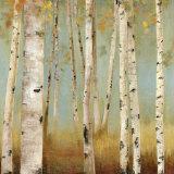 Eco I Kunst af Allison Pearce