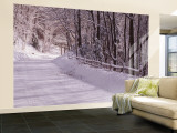 Bare Trees along a Snow Covered Road, Crystal Downs, Michigan, USA Wall Mural – Large