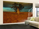 A Boab Tree Wall Mural – Large by Sam Abell