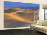 Mesquite Flat, Death Valley, California, USA Wall Mural – Large
