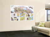 1985 Canada Vacationlands Map Wall Mural by  National Geographic Maps