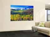 San Juan Mountains, Colorado, USA Wall Mural