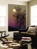 A Full Moon Shines on Winters Leafless Branches Wall Mural by George F. Mobley