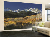 Autumnal View of Aspen Trees and the Rocky Mountains, San Juan National Park, Colorado, USA Wall Mural – Large