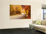 Autumn Road with Bear at Deer Crossing Sign, Vermont, USA Mural
