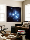 Pleiades Star Cluster Wall Mural