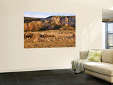 Chama River Canyon Wilderness Area, New Mexico, USA Wall Mural