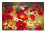 Meadow Poppies I Giclee Print by Lucas Santini