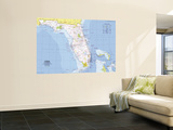 1973 Close-up USA, Florida Map Wall Mural