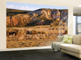 Chama River Canyon Wilderness Area, New Mexico, USA Wall Mural – Large