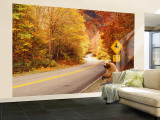 Autumn Road with Bear at Deer Crossing Sign, Vermont, USA Wall Mural – Large