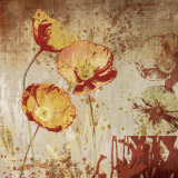 Poppy Heat II Prints by Tandi Venter