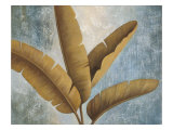 Palm Fronds I Premium Giclee Print by Jordan Gray