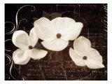 Garden Love Letter I Reproduction giclée Premium par Amy Melious