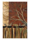 Woodland View II Premium Giclee Print by John Kime