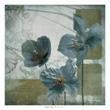 Cerulean Poppies II Prints by Robert Lacie