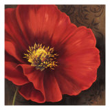 Rouge Poppies I Premium Giclee Print by Jordan Gray