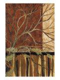 Woodland View I Premium Giclee Print by John Kime