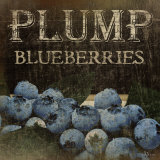 Plump Blueberries Prints by Jennifer Pugh