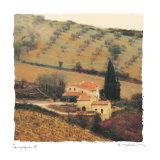 Campagna III Premium Giclee Print by Amy Melious
