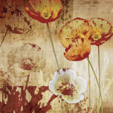 Poppy Heat I Prints by Tandi Venter