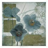 Cerulean Poppies I Print by Robert Lacie