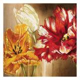 Tulips Premium Giclee Print by Selina Werbelow