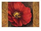 Pavots Rouges I Premium Giclee Print by Jordan Gray