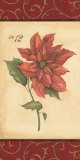 Poinsettia Poster by Stephanie Marrott