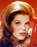 Samantha Eggar Photo