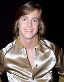Shaun Cassidy Photo