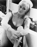 Shirley Eaton Photo