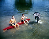 Flipper Photo