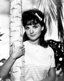 Dawn Wells Photo