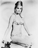 Shirley Eaton Photo