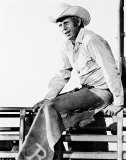 Steve McQueen Photo