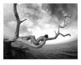 Artistic Nude Woman In Tree Photographic Print by River Clark