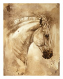 Baroque Horse Series III: III Giclee Print by S. Heather Theurer