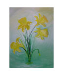 Daffodil Impresso gicle por Barbara Aliaga