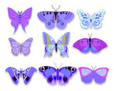 Purple Butterflies Photographic Print by Estela Gebhardt