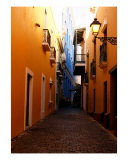 Alleys Of Old San Juan Part I Photographic Print by Manuel Burgos