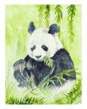 Giant Panda Giclee Print by Morgan Fitzsimons