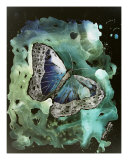Modern Abstract Fantasy Digital Butterfly Art Photographic Print by Derek Mccrea