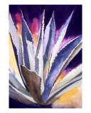 Agave 5 Giclee Print by Eunice M. Olson