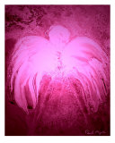 Pink Light Angel Photographic Print by Paula Majeski