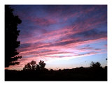Pink Sunset Photographic Print by Debrosi Art