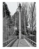 Suspension Bridge Photographic Print by Cari Cruse